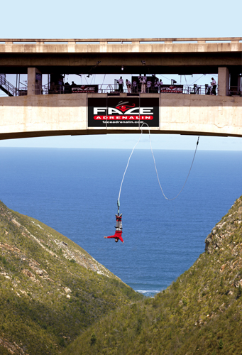 world highest bungee jump